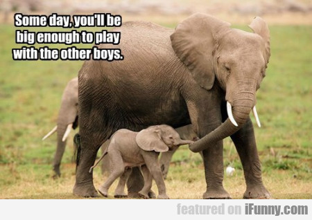 Someday You'll Be Big Enough To Play With The..