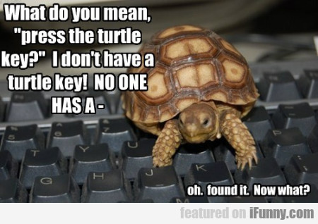 What do you mean press the turtle key