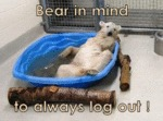 Bear In Mid To Always Log Out