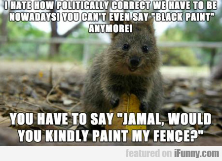 I Hate How Politically Correct...