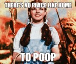 There's No Place Like Home To Poop...
