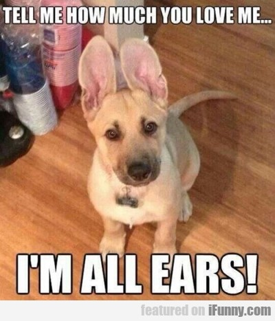 Tell Me How Much You Love Me... I'm All Ears