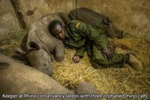 Keeper At Rhino Conservancy Sleeps