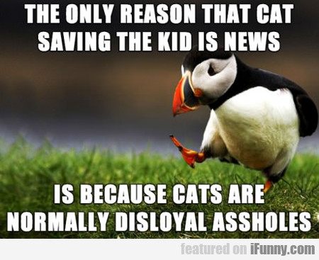 The Only Reason That Cat Saving The Kid...