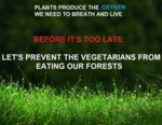 Plants Produce The Oxygen Wee Need To...