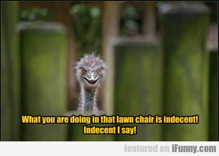 what you are doing in that lawn chair