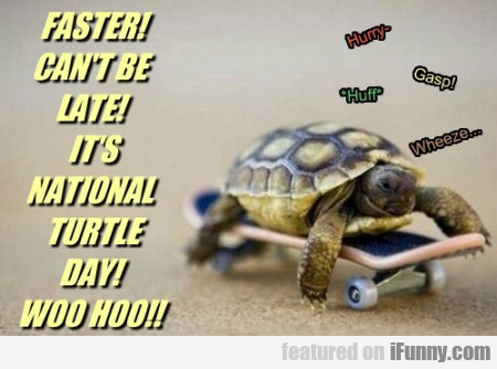 Faster! Can't Be Late. It's National Turtle