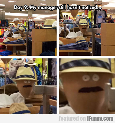 Day 9, My Manager Still Hasn't Noticed...