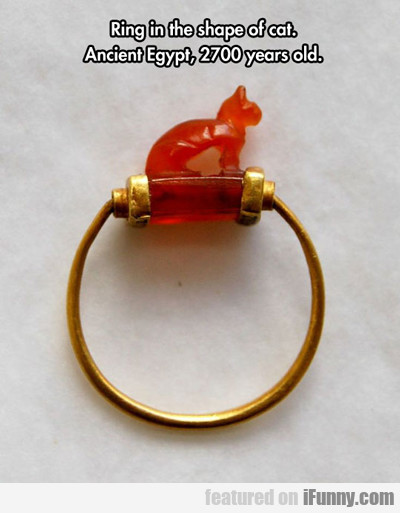 Ring In The Shape Of A Cat...