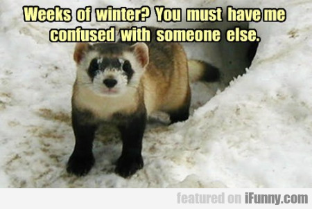 weeks of winter? you must have me confused