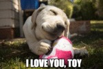 I Love You Toy