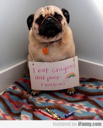 I Eat Crayons And I Poop Rainbows