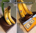 There's Always Money In The Banana Stand...