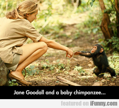 Jane Goodall And A Baby Chimpanzee...