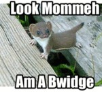Look Mommeh Am A Bwidge