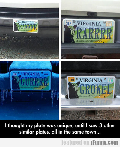I Thought My Plate Was Unique...