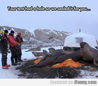 Your Tent Had A Hole...