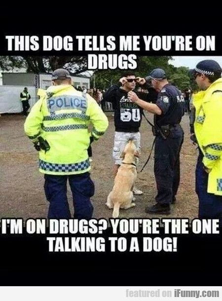 This Dog Tells Me You're On Drugs