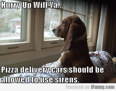 Hurry Up Will Ya... Pizza Delivery Cars Should..