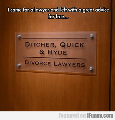 I Came For A Lawyer And Left...