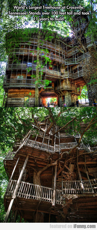 world's largest treehouse in...