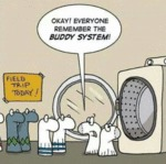 Okay! Everyone Remeber The Buddy System