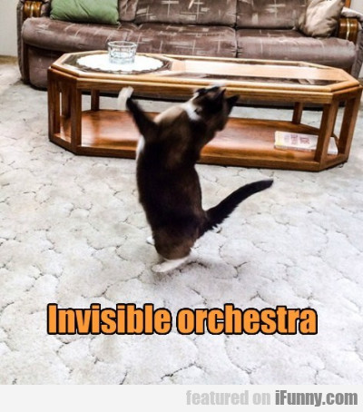 Invisible Orchestra
