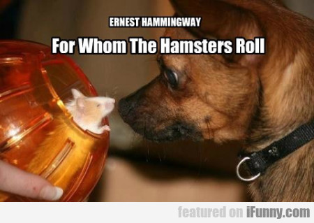 Ernest Hammingway - For Whom The Hamsters..