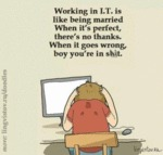 Working In I.t. Is Like Being Married. When It's..