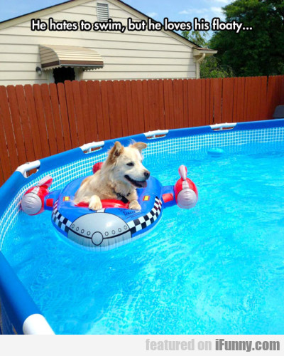 He Hates To Swim But He Loves His Floaty