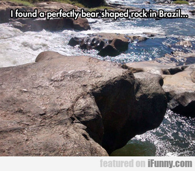 I Found A Perfectly Bear Shaped Rock...