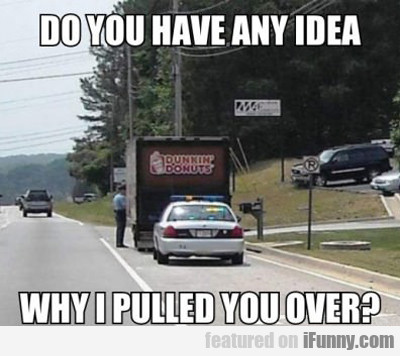 Do You Have Any Idea Why I Pulled You Over?