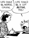 Life Could Be Worse, Calvin