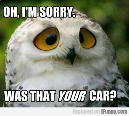 Oh, I'm Sorry. Was That Your Car?