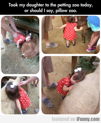 Took My Daughter To The Petting Zoo Today...