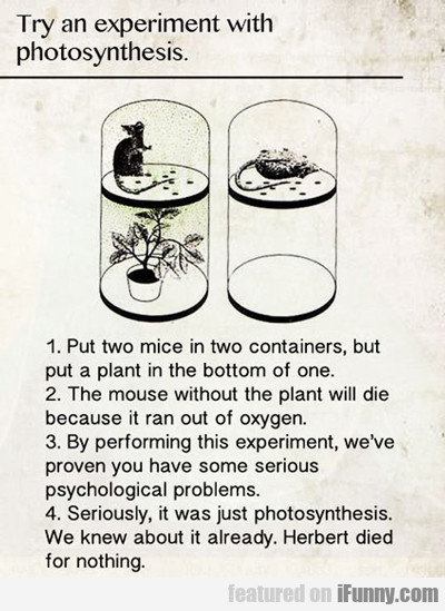 Try An Experiment With Photosynthesis...