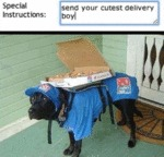 Special Instructions - Send Your Cutest...