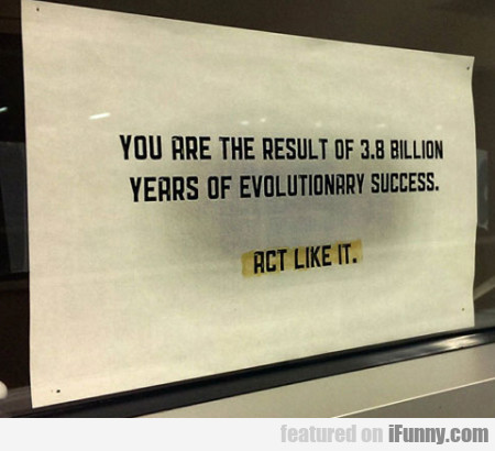 You are the result of 3.8 billion years of...