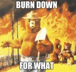 Burn Down For What...