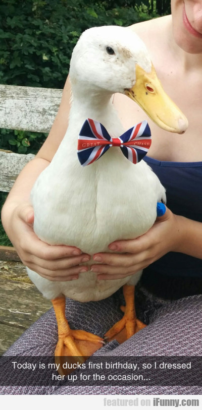 Today is my ducks first birthday so I dressed..