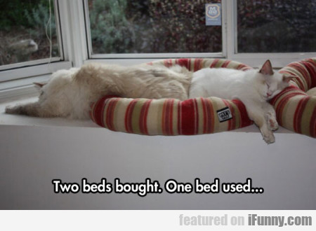 Two beds bought. One bed used