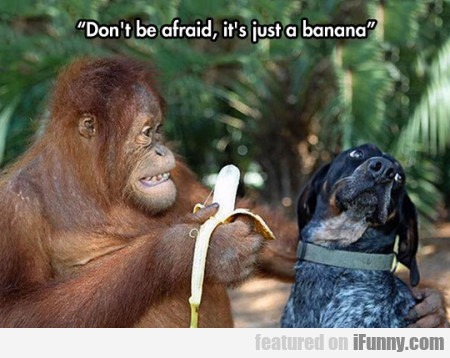 Don't Be Afraid, It's Just Banana