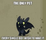 The Only Pet...