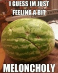 I Guess I'm Just Feeling A Bit Meloncholy...
