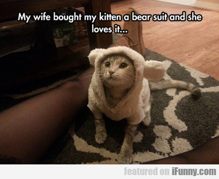 My Wife Bought My Kitten A Bear Suit And..
