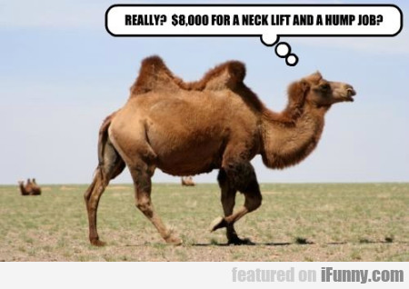 Really? $8000 For A Neck Lift And A Hump Job