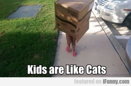 Kids Are Like Cats