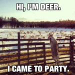 Hi I'm Deer. I Came To Party