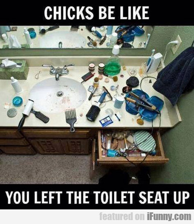 Chicks Be Like, You Left The Toilet Seat Up...