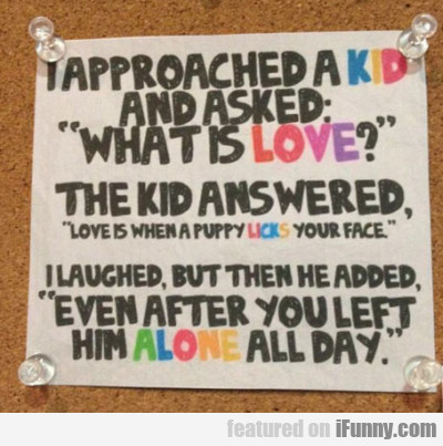 I Approached A Kid And Asked What Is Love..
